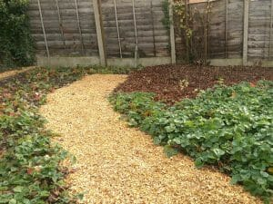 Stones4Homes Activity Chips on a strawberry patch path