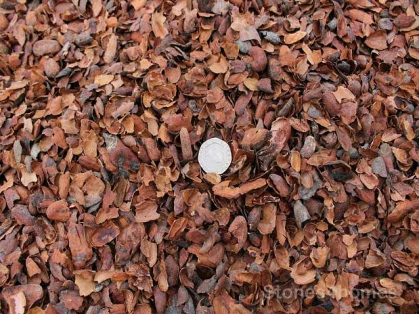Cocoa Shell Mulch for Size
